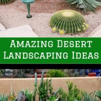 Amazing Desert Landscaping Ideas