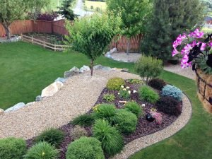 6 xeriscape landscaping design ideas1