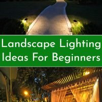 Landscape Lighting Ideas For Beginners
