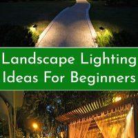 Landscape Lighting Ideas For Beginners