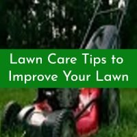 Lawn Care Tips to Improve Your Lawn