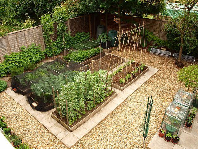 how to design a vegetable garden