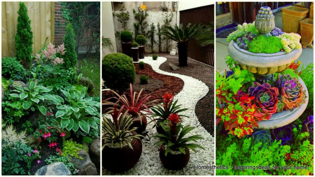 Small front garden design ideas