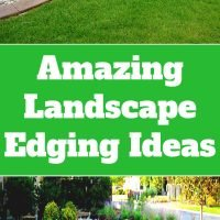 Amazing Landscape Edging Ideas