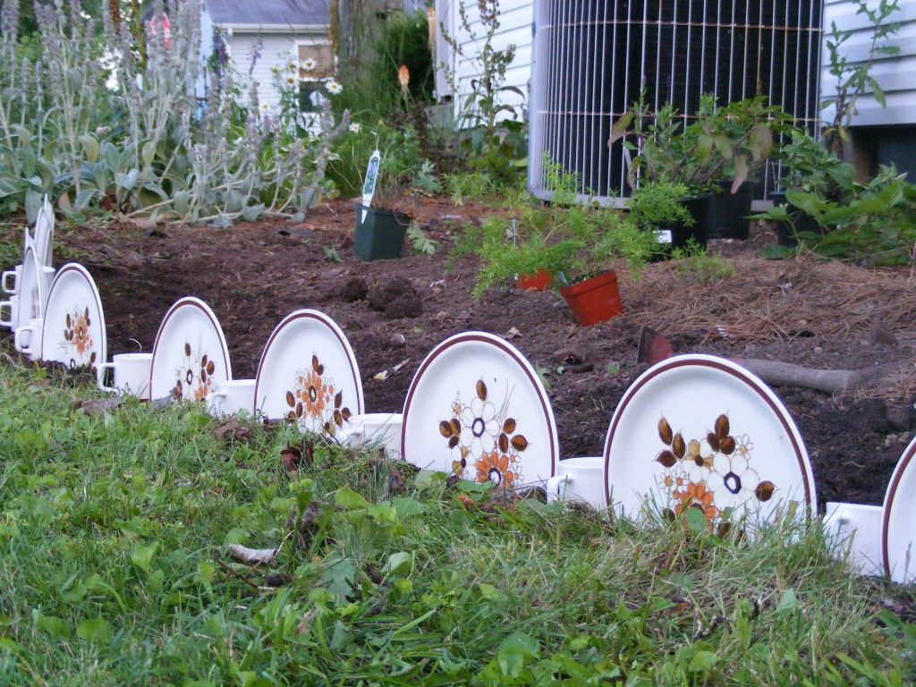 Dishes as Garden Edging