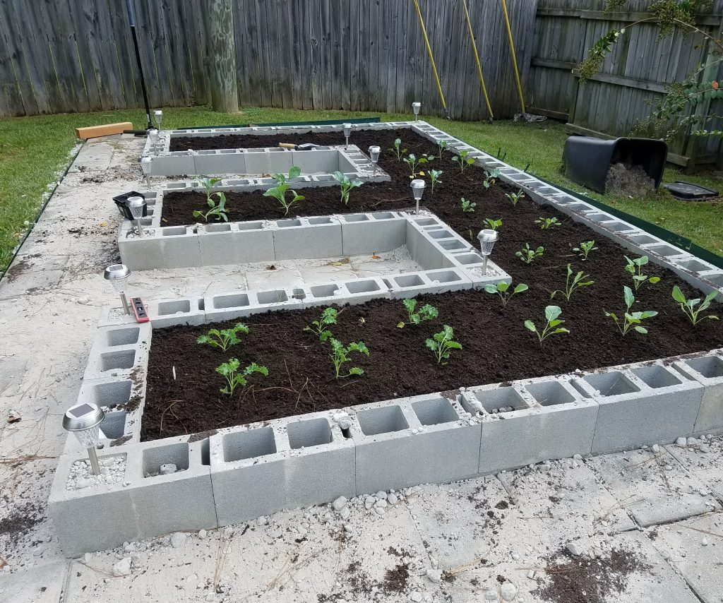 Line Your Garden Beds with Cinder Blocks