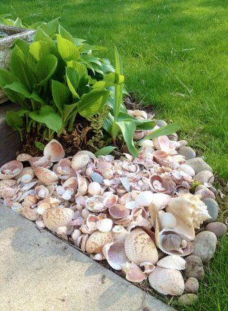 Seashells as Garden Edging