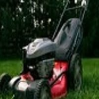 10 Green Lawn Care Tips to Keep Your Lawn Green And Healthy