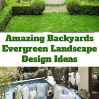 Amazing Backyards Evergreen Landscape Design Ideas