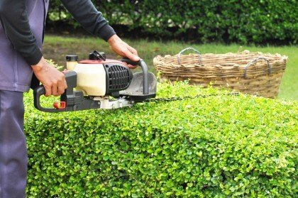 7 Amazing Landscape Maintenance Tips You Will Love