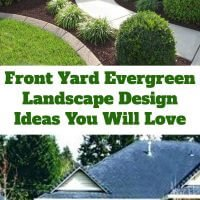 front yard evergreen landscape design ideas
