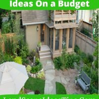 Amazing Low Maintenance Garden Ideas On a Budget