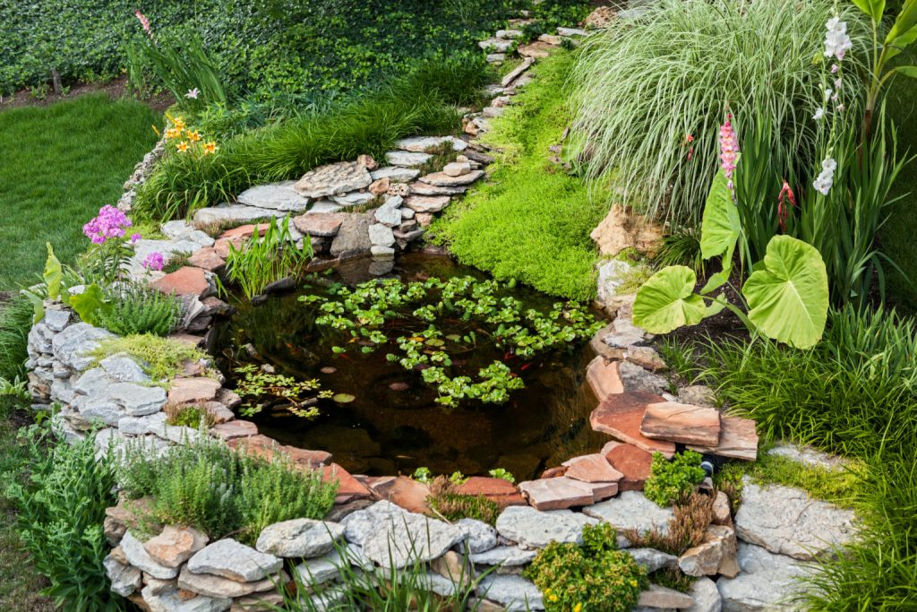 Idea #4 Create a tranquil pond