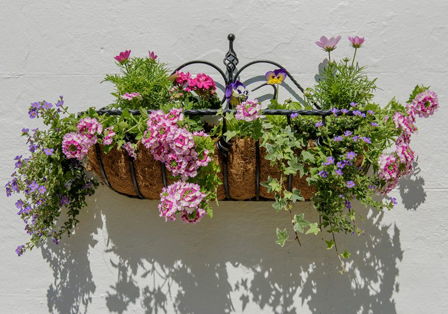 Hang baskets filled with blooms