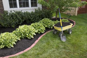 diy landscaping ideas on a budget