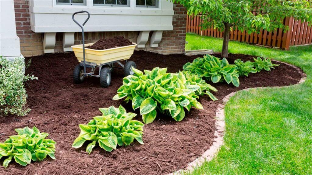 8 Amazing Garden Maintenance Tips You Will Love