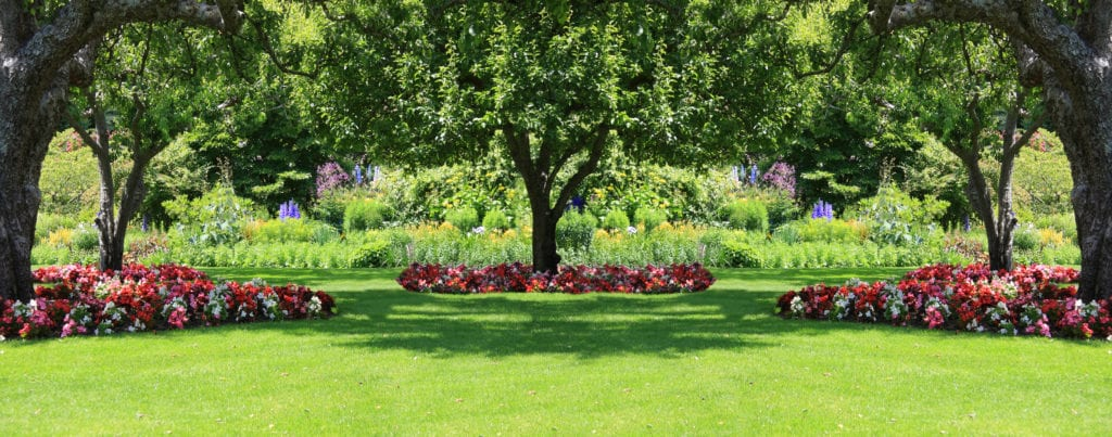 Build a flower bed around a tree