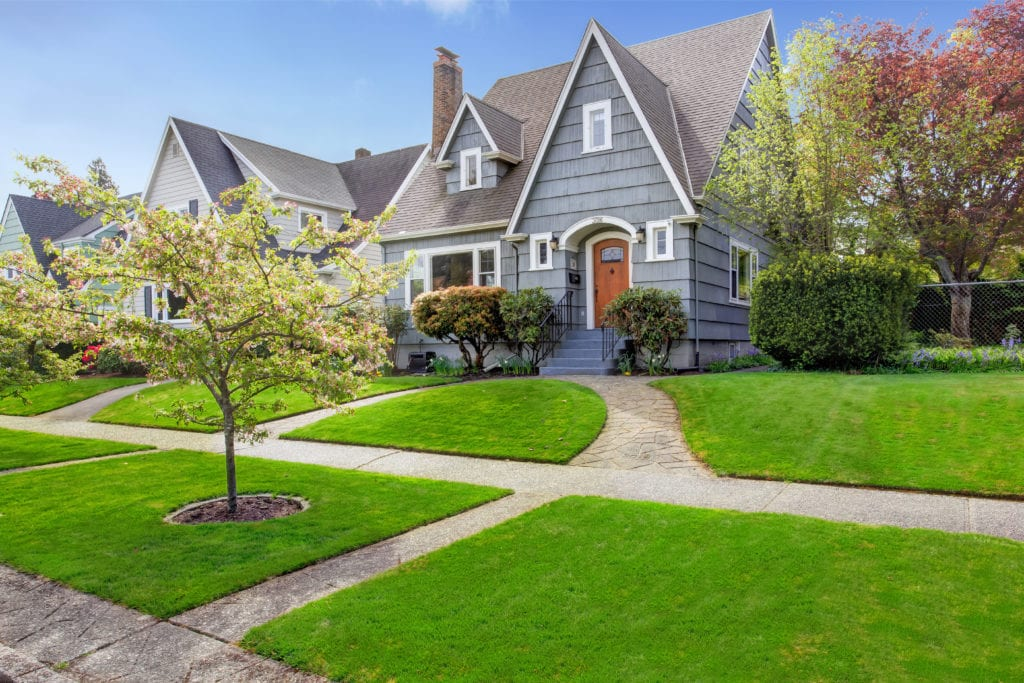 Improve your grass